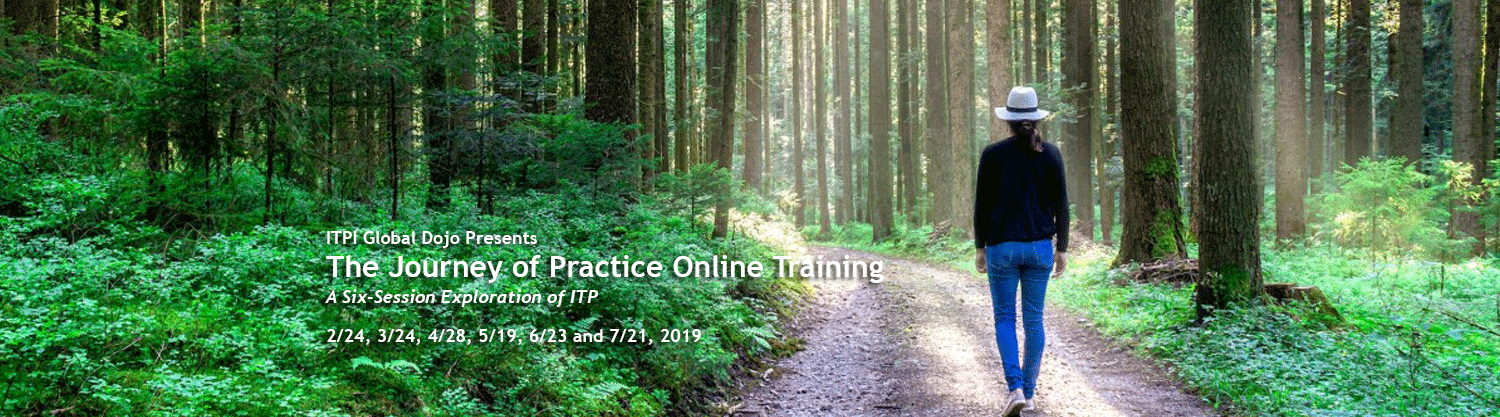 Journey of Practice Online Training  –  An Online Exploration of ITP